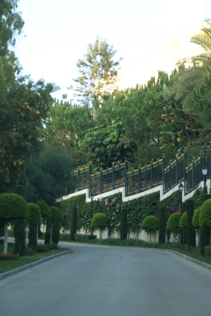 ogrodzenie pałacu szeika, rozpusta i złoto fot. Joanna Wędrychowicz