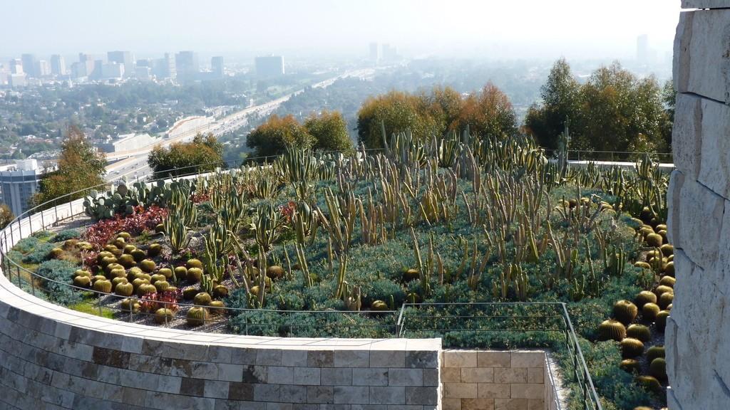 Centrum Gette'ego cypel kaktusów by Dorota Kuneck